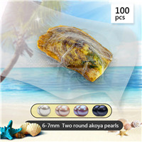 wholesale 6-7 mm round Akoya two pearls in oyster 100pcs
