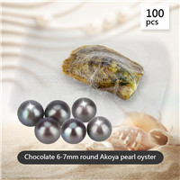 wholesale 6-7mm round Chocolate Akoya pearl oyster 100pcs
