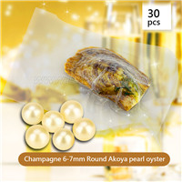 Latest Wholesale Champagne Round AAA Akoya 6-7mm pearl in oyster