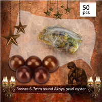 Popular Bronze 6-7mm saltwater round Akoya pearl oyster 50pcs