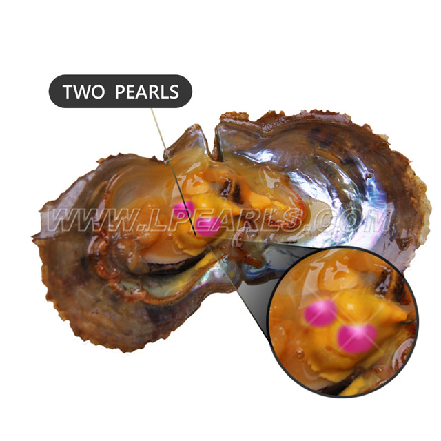 Mixed Color Pearls 10PCS Saltwater Akoya Oyster with Single Round Pearl 6-7mm