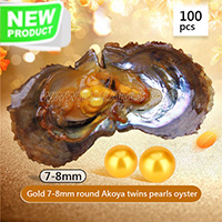 Latest 7-8mm Round Akoya Gold twin pearls oyster 100pcs